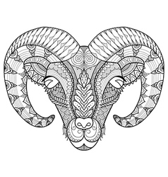 horn sheep coloring vector image