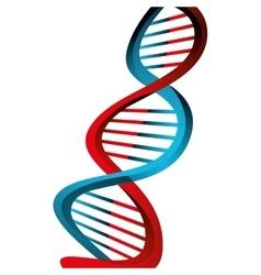 Molecular structure of DNA vector