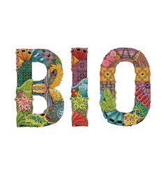 word bio decorative zentangle object vector image