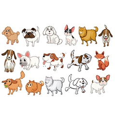 Different breeds of dogs vector