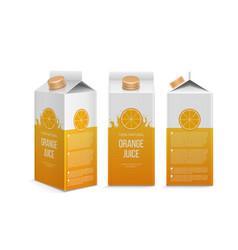 realistic orange juice box in different vector image