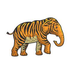 Fictional animal tiger elephant sketch vector