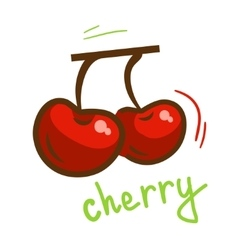 Fresh cherry berry vector
