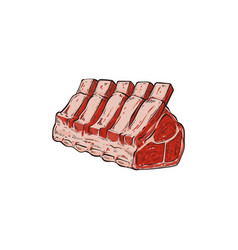 Hand drawn cut raw beef chopped into row of vector