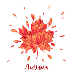 hello autumn watercolor floral design maple leaf vector image