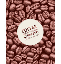 label or banner for arabica premium coffee vector image