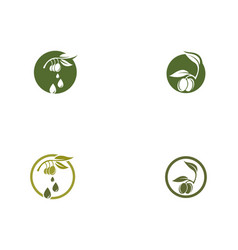 Olive logo template icon vector