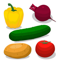 ripe vegetables pepper vector image