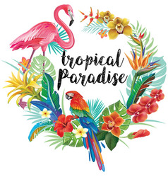 Round border with tropical flowers and birds vector