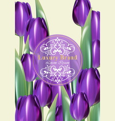 Tulip flowers card frame decor with wooden vector
