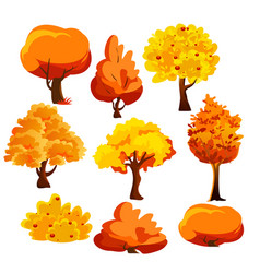bright colorful autumn vector image vector image