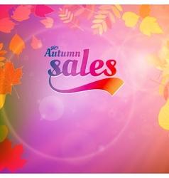 Autumn sale design template vector image