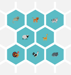 Flat icons gobbler rooster mutton and other vector