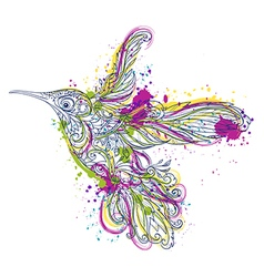 Hummingbird floral ornament and watercolor splash vector