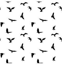 Seamless pattern of flying birds silhouettes on vector