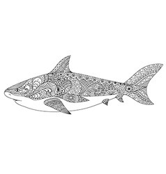 shark coloring vector image vector image