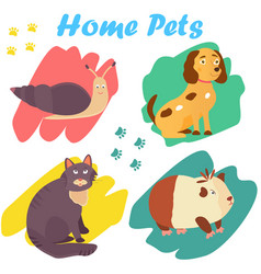 Bright images of domestic animals cat snail dog vector