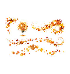 Fall decor elements vector