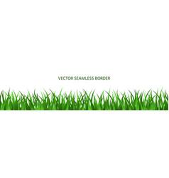 green grass seamless border backdrop summer banner vector image