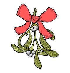hand drawn mistletoe plant vector image