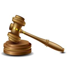 Judge gavel vector image