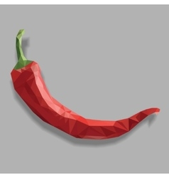 Red chili pepper isolated vector