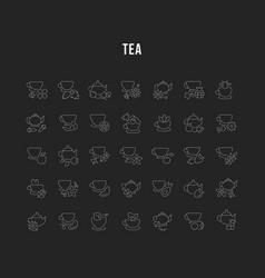 set line icons tea vector image