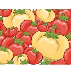 Red and yellow tomatoes background vector image vector image