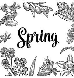 square poster with flower blooming branch leaves vector image vector image