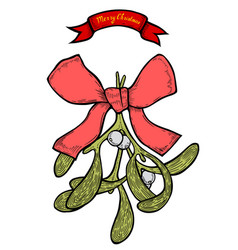 hand drawn mistletoe vector image
