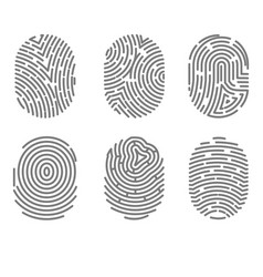 set fingerprint types with twisted lines signs vector image