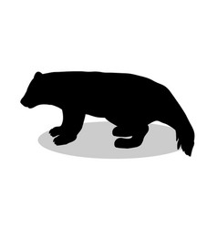 Wolverine bear wildlife black silhouette animal vector