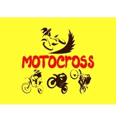 Off road Motorcycles set vector image