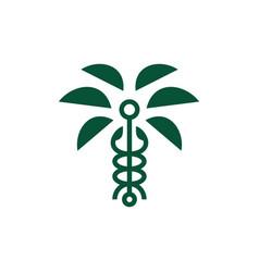 caduceus palm tree tropical logo icon vector image