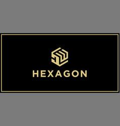 Dw hexagon logo vector