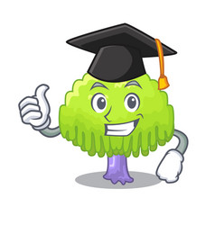 Graduation drawing of willow tree shape cartoon vector