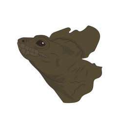 portrait of a lizard vector image