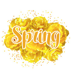 spring background with fluffy yellow tulips vector image