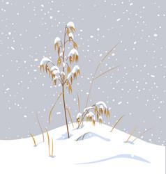 Wild cereals under snow vector