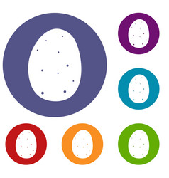 fresh potato icons set vector image vector image