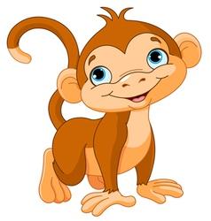 Baby monkey vector image vector image