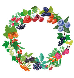 Berry frame twigs and berries isolated vector