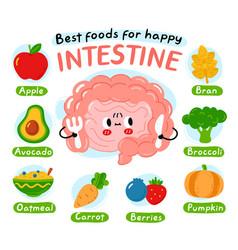 Best foods for happy interstine infographic poster vector