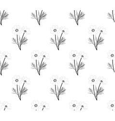 cosmos seamless on white background vector image