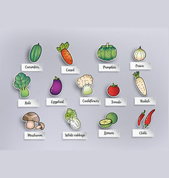 freehand drawing vegetables vector image