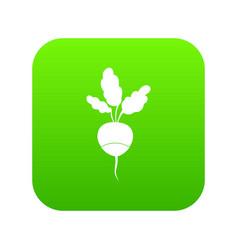 fresh radish icon digital green vector image