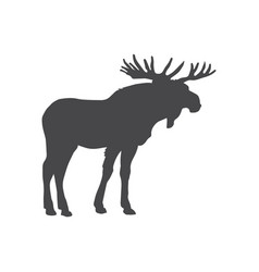 moose icon simple car sign vector image