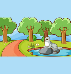 scene with seal in park vector image