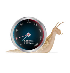 snail with internet speed test meter vector image