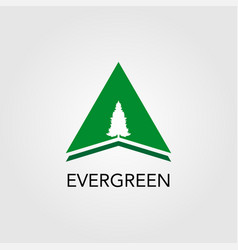 Triangle with pine tree logo vector